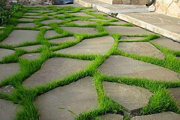Фото привлекательного покрытия из бетона и травы