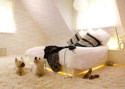Ковёр не только делает комнату теплее, но ещё и украшает её