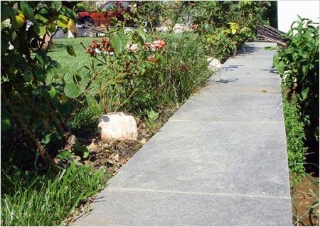 На фото - садовая тропинка