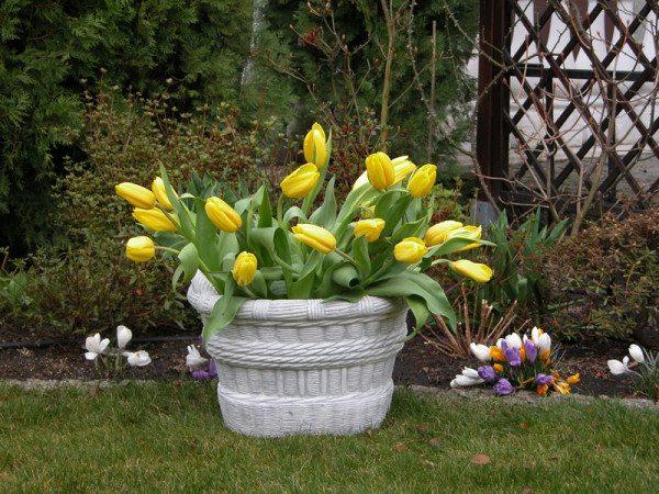 На фото – бетонная клумба в саду