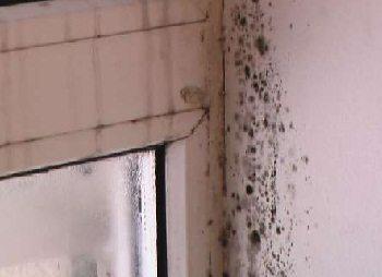Неправильный отвод влаги из помещения