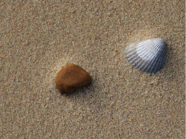 Речной песок для раствора