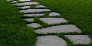 Трава, пересекающая цементную дорожку, усиливает гармонию с интерьером сада